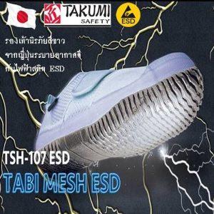 TSH107-ICON - ESD