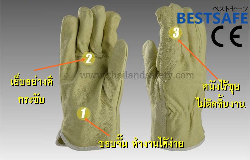 http://thailandsafety.com/wp-content/uploads/2016/06/Best-argon-glove-2.jpg