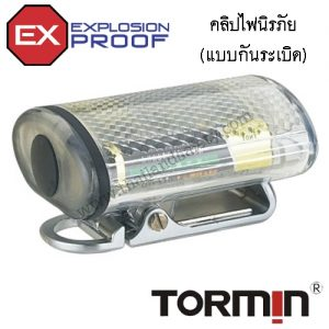 bw4100-copy